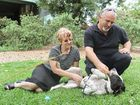 FULLY RECOVERED: Bull arab Lucy plays with her new owners Debbie and Warren after getting her final vet check.