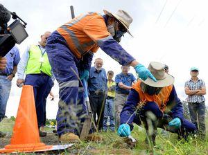Fiery pests cop a blast as farmers learn more