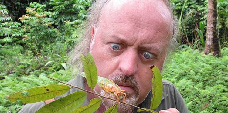 UK comedian Bill Bailey who will receive an honorary doctorate from the University of the Sunshine Coast. Photo Contributed