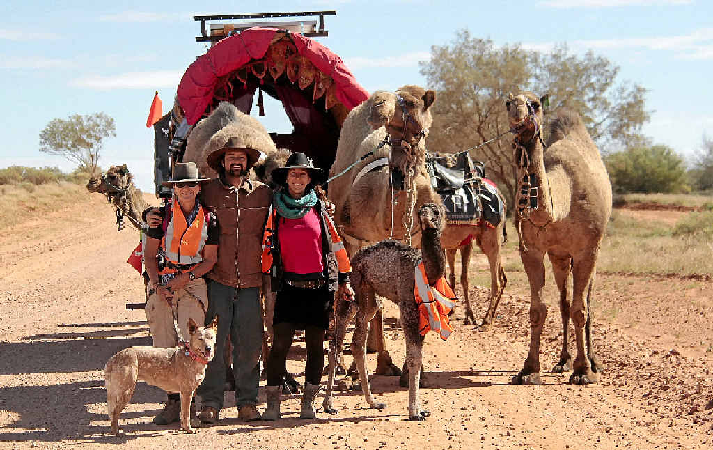 ADVENTUROUS: Angela Parr, at left with one of the camels and, above, with Kamahl, Marie-Claude, Ruby the dog and their camels at the beginning of the 60-day desert trek.