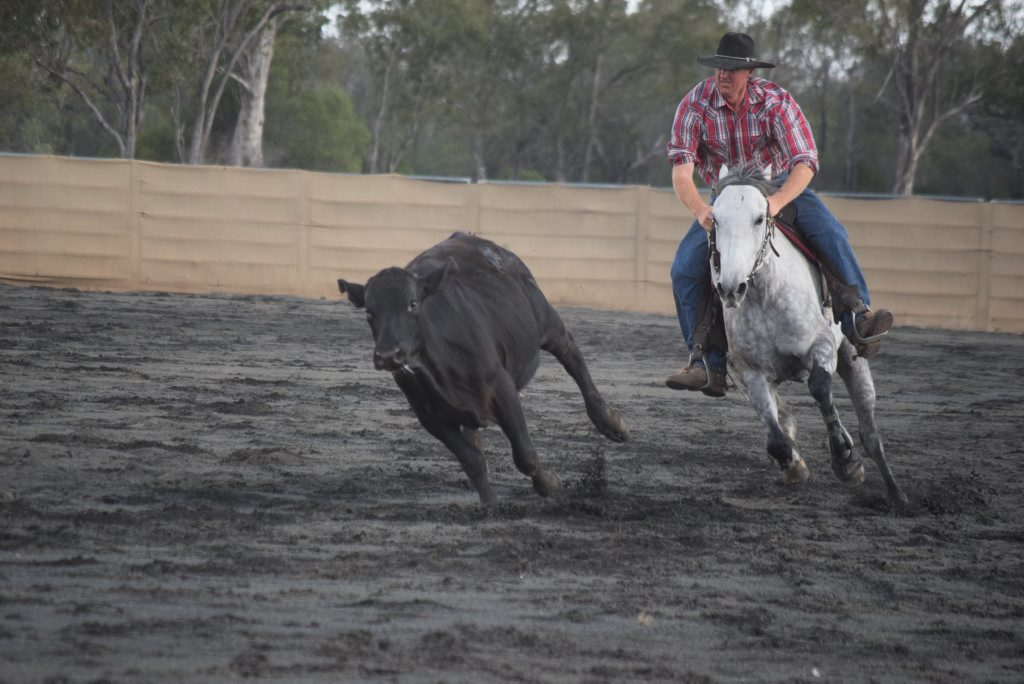 The Condamine Bell Campdraft runs from Friday until Sunday this weekend.