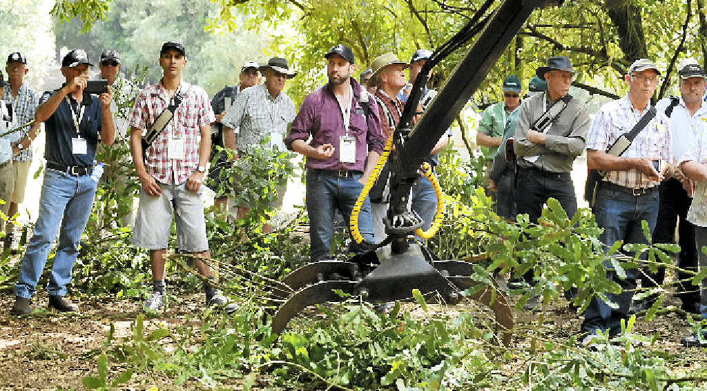 NEATLY DONE: Those attending the Australian Macadamia Society Machinery Field Day at Park Properties, Springvale Rd, Eureka watch a demonstration of pruning and chipping from S&G; Agriculture.