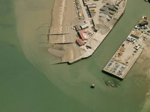 A satellite picture of the so-called crab, aptly dubbed 'Crabzilla', has gone viral after first surfacing on Weird Whitstable.