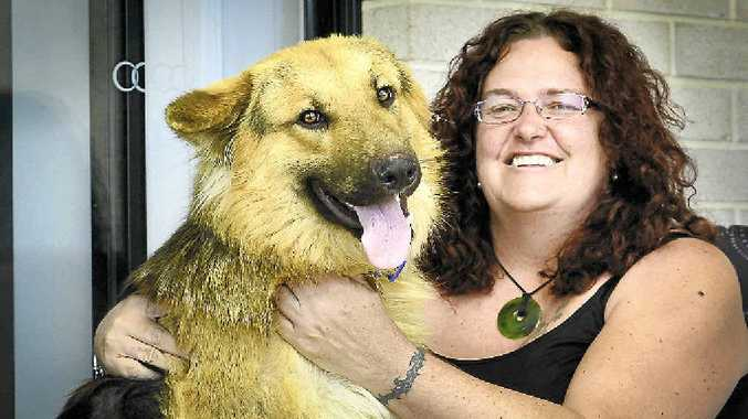 REUNITED: Banesse Atkinson is thankful to have her german shepherd Rex back after he was lost for two months.