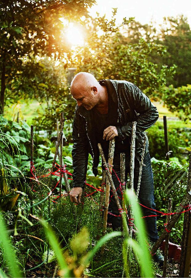 Matt Moran in the garden to promote his latest book, Matt's Kitchen Garden Cookbook.