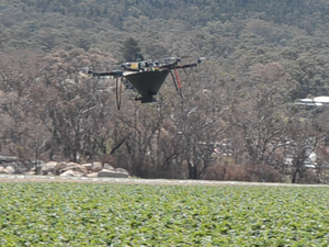 Aerobugs take flight over Stanthorpe Strawberry Fields