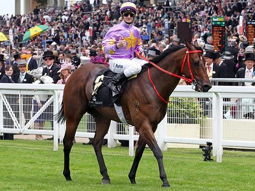 Jockey Zac Purton now has an undeniable chance to win Australia's greatest race on the first Tuesday in November after riding Admire Rakti to victory in the Caulfield Cup.