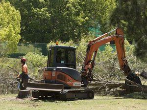 Trees cut down in Ballin Dr park