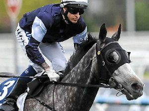 Favourite in box seat for Cox Plate ride