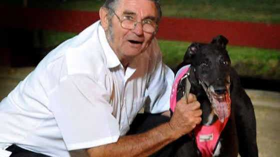 BIG CHANCE: Trainer Bill Elson and his greyhound Bill's Fantasy will be hoping to snare the $40,000- to-the-winner Lismore Cup on Friday night.