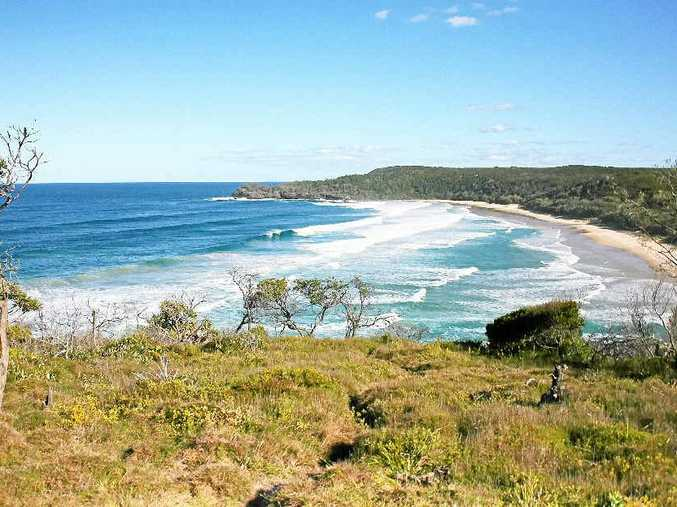 """A nude beach lobby group wants to end the buck-passing and get a decision on declaring Alexandria Bay in the Noosa National Park officially """"clothing optional""""."""