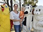 Lea Schimming and her son Jules Schimming meet with the chicken, cow and sheep.