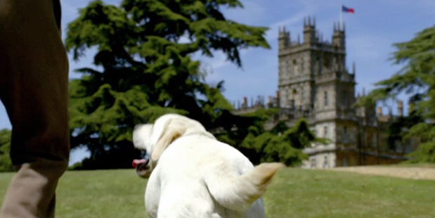 The dog even features in the programme's opening credits - but for how much longer?