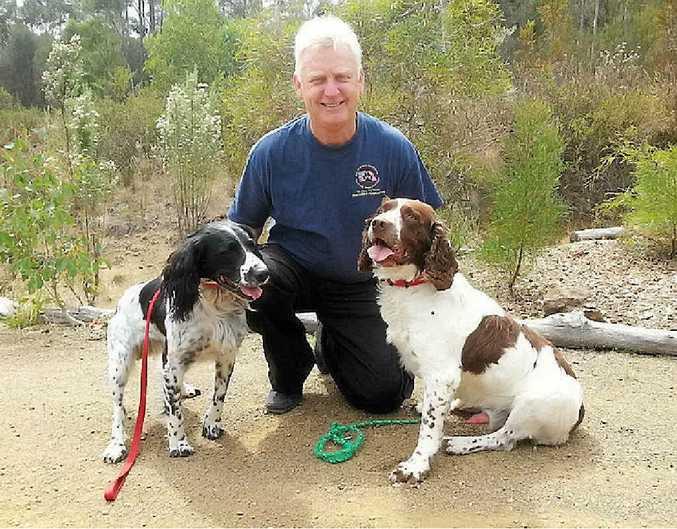 HELPFUL ADVICE: Australian dog trainer Steve Austin will be in Gladstone to undertake a training program with Gladstone Regional Council.