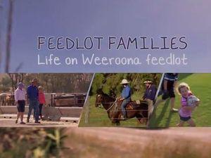 Videos promote understanding of feedlot industry