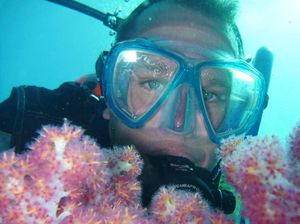 Wonders of reef to be revealed at talk