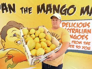 Ban could see Dan the Mango Man lose $30k worth of mangoes