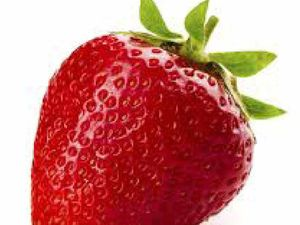 Sunshine Coast a hub for strawberry growing