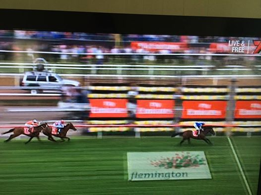 Protectionist winning the 2014 Melbourne Cup