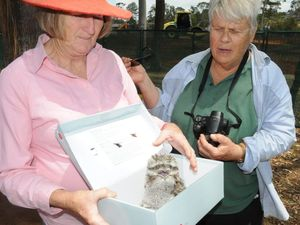 Protesters and workers join forces to save bird