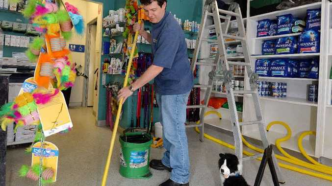 Northern Beaches Veterinary Hospital vet Paul McGeown was busy mopping up.