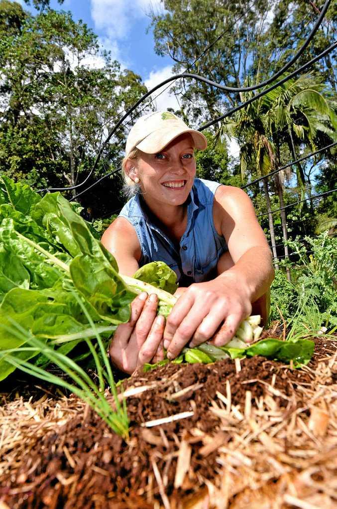 Crystal Maymann lives her dream at Crystal Organics in Palmwoods.