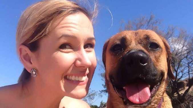 Rockhampton Baiting Attempt Makes Owner Fear For Pet
