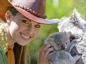Miss World Australia cuddles up to Australia Zoo koala