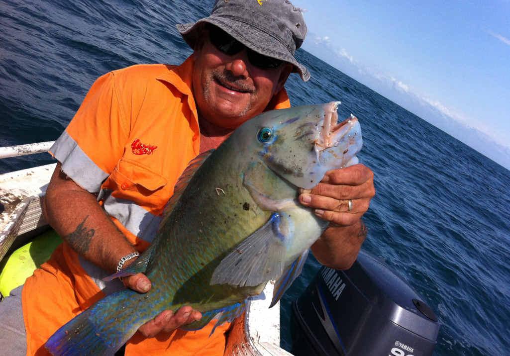 IT'S A KEEPER: Gary Webb caught a blue bone tusk fish off Turkey Beach on Saturday morning.
