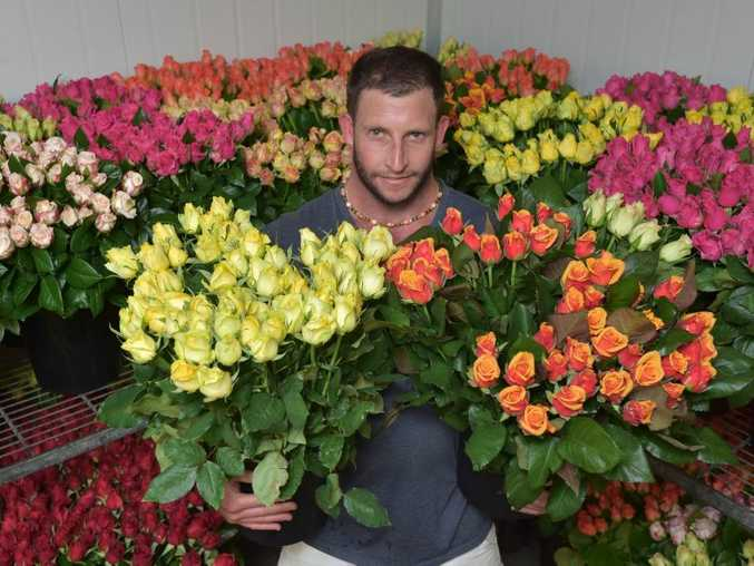 Martin Harris from E & J Paradise Farm at Yandina with some of his roses.