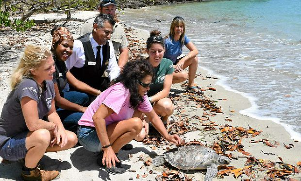 MAGIC MOMENT: The Eco Barge team and Villa Botanica staff were thrilled to release a rescued turtle back into the wild. Pictured are: Libby Edge, Debbie Niale, Danny Micallef, Lee Southern (back) and Andie Kriwonosow, Emma Ferguson and Jacki Smith (front).