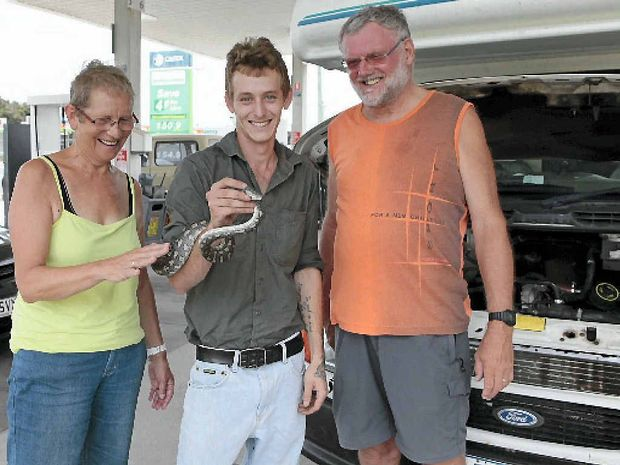 SNAKES ALIVE: Dutch tourists Hermien Kamphius and her husband Jan with Joey Drumm who pulled a python out of their engine.