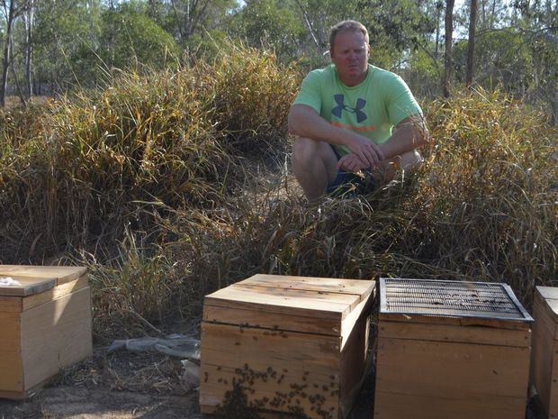 Somerset Regional Council has told Paul Leman he must remove the beehives from his Fernvale property.