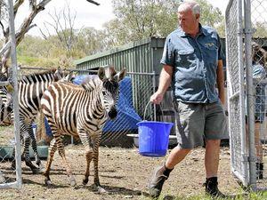 Bill could kill animal circus: zoo owner