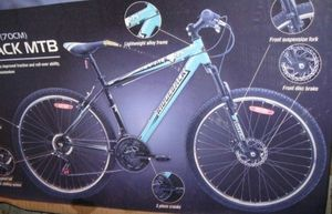 Missing man Darrell Simon was last seen riding a bike like this. Photo Contributed