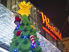 Half a million Lego bricks have gone into the largest Lego Christmas tree in the southern hemisphere.