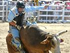 HOLDING: Toowoomba rider Ben Palmer, pictured at the 2013 Warwick Rodeo, will compete in the Pittsworth Rodeo on Saturday.