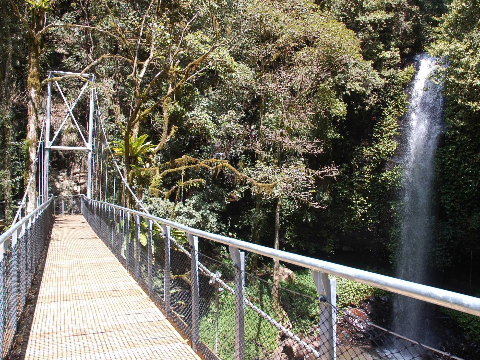 Eco tourism on the Coffs Coast has received a boost with success for Dorrigo State Forest at the NSW Tourism Awards.