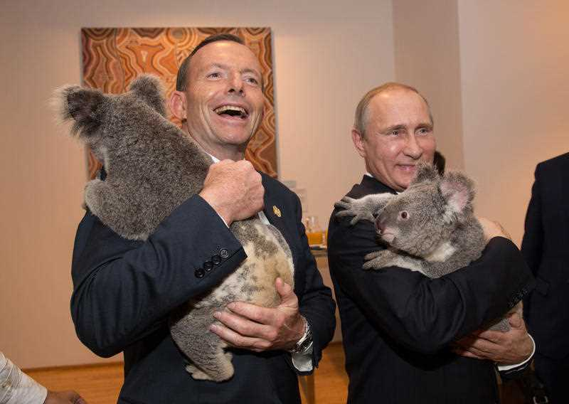 In this photo released by G20 Australia and taken on Saturday Nov 15, 2014, Prime Minister of Australia Tony Abbott and President of Russia Vladimir Putin hold koala's during a photo opportunity on the sidelines of the G-20 summit in Brisbane, Australia.