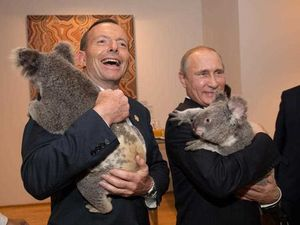 G20 koala photos cost taxpayers $24,000