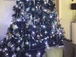 Christmas tree creations of the Sunshine Coast