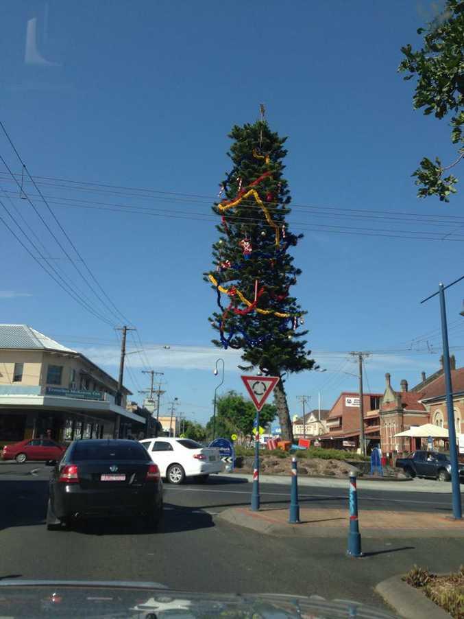 Lismore's wonky Christmas tree