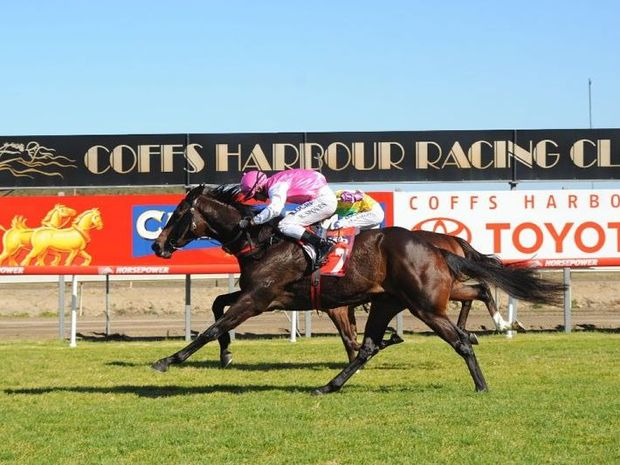 Kareem's Edge is unbeaten on his home track at Coffs Harbour and the gelding has the chance to keep that record during this afternoon's race meeting.