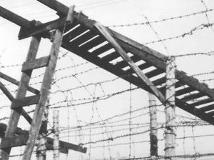 Book records over-the-top escape from Nazi camp