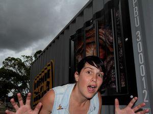 VIDEO: Dinosaur exhibition set-up under way at City Hall