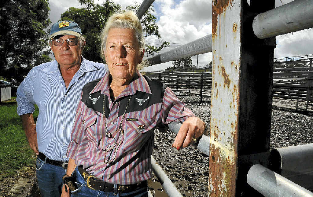 VICTIMS: Stuart and Marg McPhee, of Britannia Poll Herefords at Ulmarra near Grafton, have experienced problems with cattle duffing over the years.