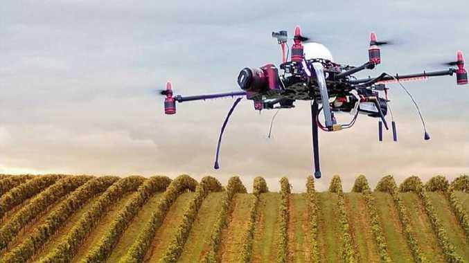 Clovely Estate has been using drones to keep control of their crops.