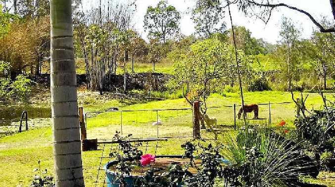 SERENE SURROUNDS: Debbie and David Sainsbury of Round Yard Rocking Horses enjoy their working view.