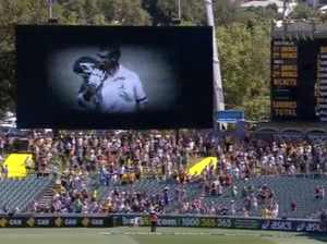 Phillip Hughes tribute