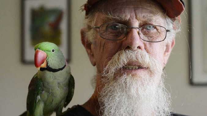 NOT HAPPY: Grafton bird breeder John Minshull is fearful of proposed new pet laws that will limit the number of birds he can keep. Photo: Debrah Novak